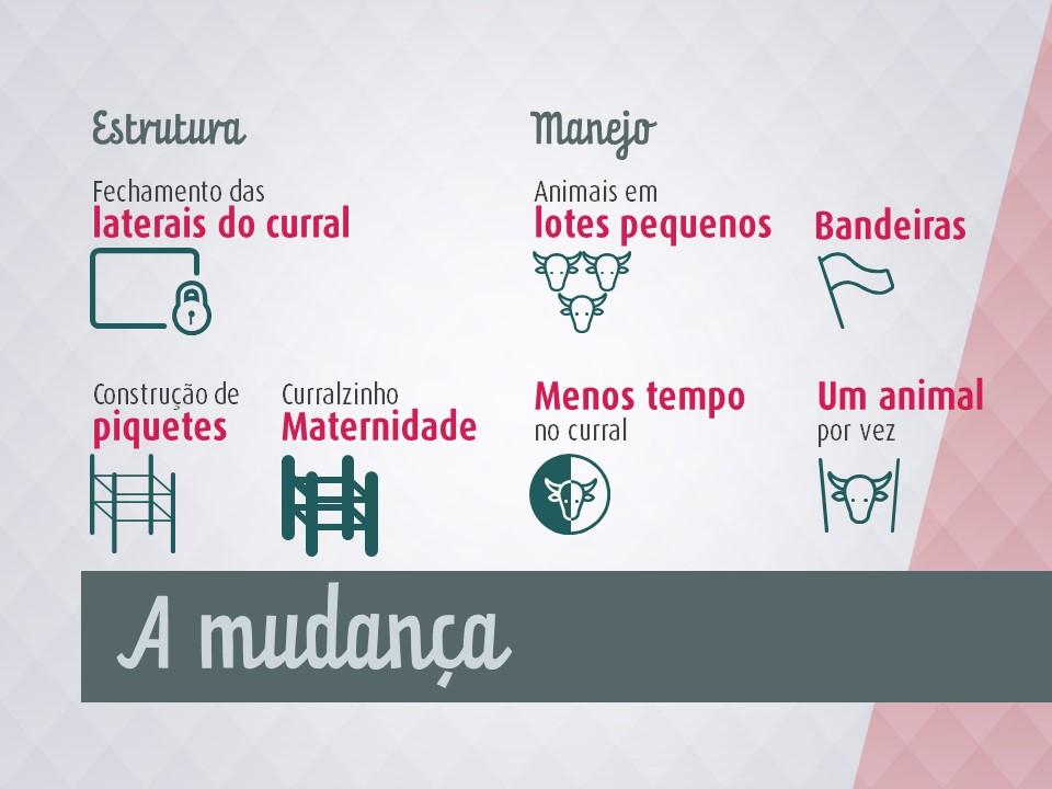 palestra-manejo_consciente-08
